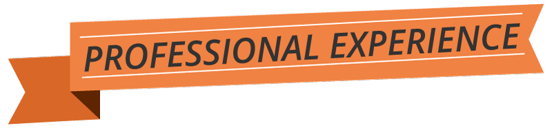 Professional Experience logo